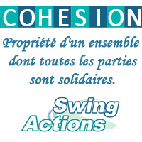 fp_partner_cohesion_swingactions